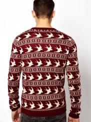 New Look Jumper in Bird Print